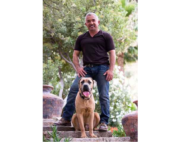 CESAR MILLAN IT'S ALL ABOUT FAMILY TOUR 2019